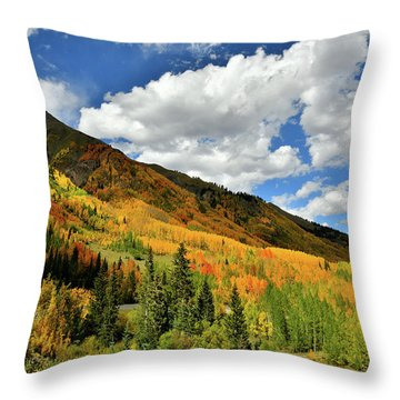 Color In The Spotlight At Red Mountain Pass Throw Pillow