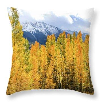 Colorado Aspens And Mountains 1 Throw Pillow