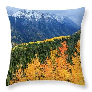 Colorado Aspens And Mountains 4 Throw Pillow