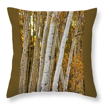 Colorado Aspens Throw Pillow