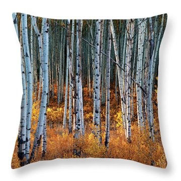 Colorado Autumn Wonder Panorama Throw Pillow