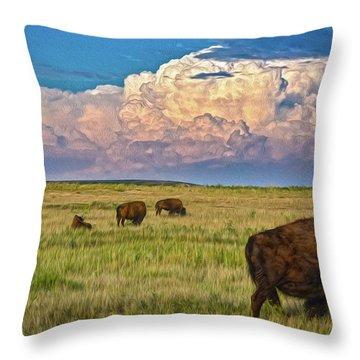 Colorado Bison Herd Throw Pillow