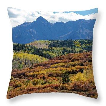 Throw Pillow featuring the photograph Colorado Color Bonanza by James BO Insogna
