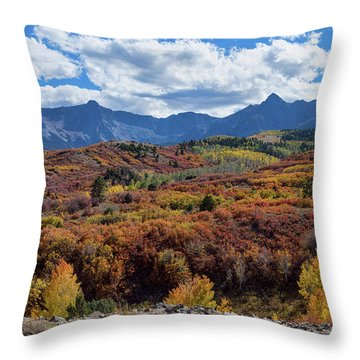 Throw Pillow featuring the photograph Colorado Color Lalapalooza by James BO Insogna