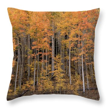 Colorado Guardians Throw Pillow