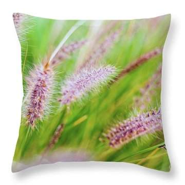 Colorful Flowers In Purple Spikes, Purple Fountain Grass, Close- Throw Pillow