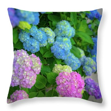 Throw Pillow featuring the photograph Colorful Hydrangeas by Lora J Wilson
