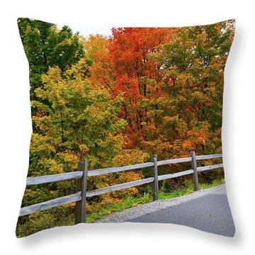 Colorful Lane Throw Pillow