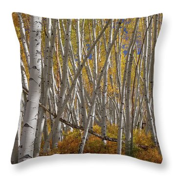 Throw Pillow featuring the photograph Colorful Stick Forest by James BO Insogna