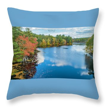 Throw Pillow featuring the photograph Colors Of Cady Pond by Michael Hughes