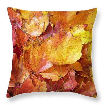 Colors Of Fall - Red To Yellow Throw Pillow