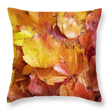 Colors Of Fall - Yellow To Red Throw Pillow