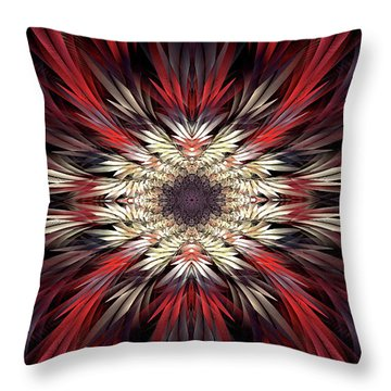 Colossians Throw Pillow