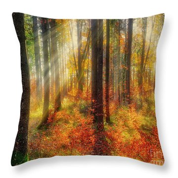Colours Of Nature 02 Throw Pillow