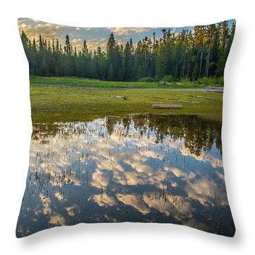 Colter Bay Reflections Throw Pillow