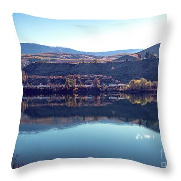 Throw Pillow featuring the photograph Train Reflection by Mae Wertz