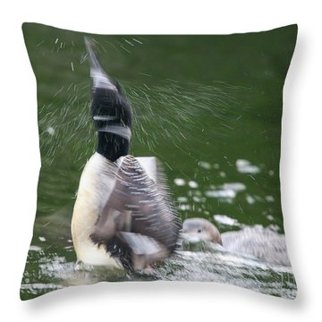 Common Loon Shaking Off Water Throw Pillow