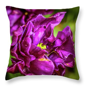 Contrasting View Throw Pillow