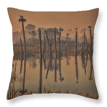 Cool Day At Viera Wetlands Throw Pillow
