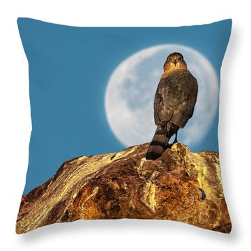 Coopers Hawk With Moon Throw Pillow