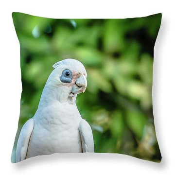 Corellas Outside During The Afternoon. Throw Pillow