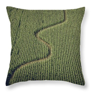 Throw Pillow featuring the photograph Corn Field by Steve Stanger