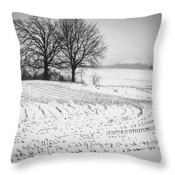 Corn Snow Throw Pillow