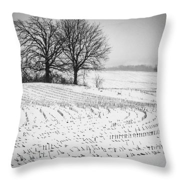 Throw Pillow featuring the photograph Corn Snow by Kendall McKernon
