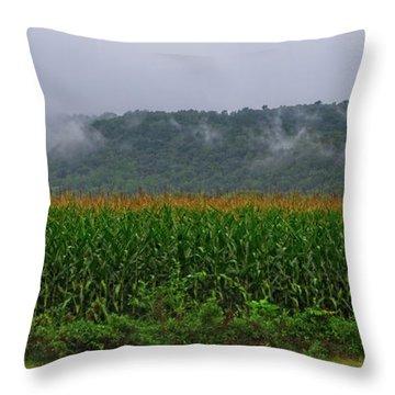 Cornfields Of Warren County Throw Pillow