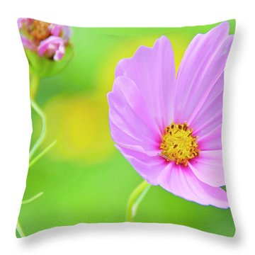 Cosmos Flower In Full Bloom, Bud Throw Pillow