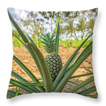 Costa Rica Naturally Growing Pineapple Throw Pillow