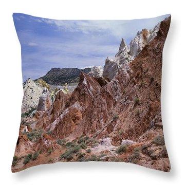 Cottonwood Spires 1-sq Throw Pillow