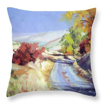 Country Blue Sky Throw Pillow