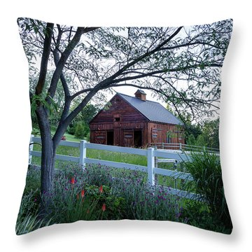 Country Memories Throw Pillow