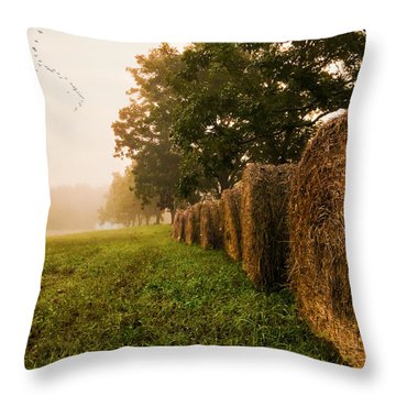 Country Morning Mist Throw Pillow