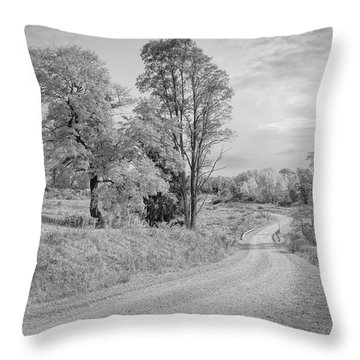 Throw Pillow featuring the photograph Country Road by John M Bailey