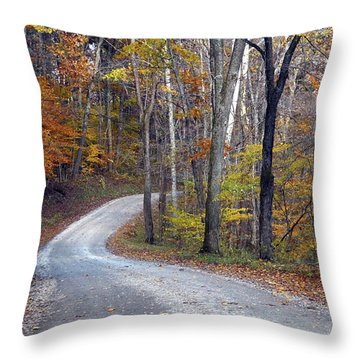 Throw Pillow featuring the photograph Country Road On Fall Day by Mike Murdock
