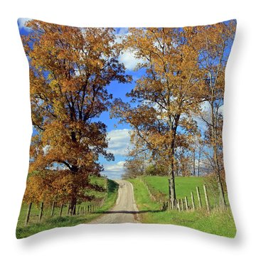 Throw Pillow featuring the photograph Country Road Through Fall Trees by Angela Murdock