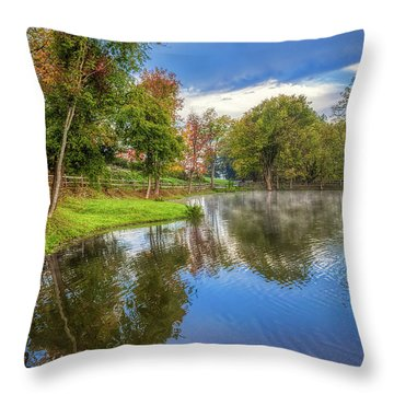 Countryside Drive Throw Pillow