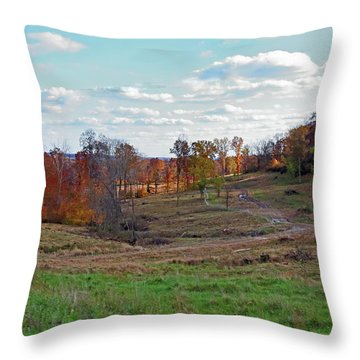 Throw Pillow featuring the photograph Countryside In The Fall by Angela Murdock
