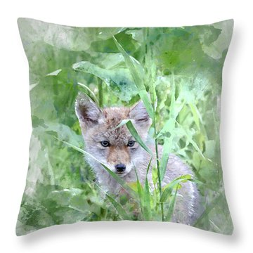 Coyote Pup Throw Pillow