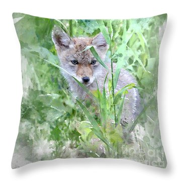 Throw Pillow featuring the photograph Coyote Pup by Brad Allen Fine Art