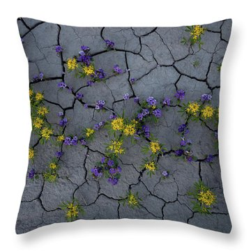 Cracked Blossoms Throw Pillow