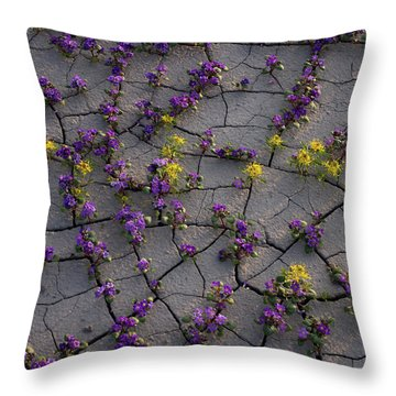 Cracked Blossoms II Throw Pillow