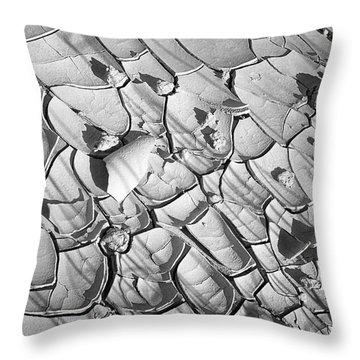 Cracked Earth Abstract Throw Pillow