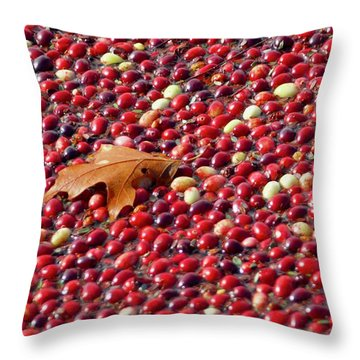 Cranberry Season Throw Pillow
