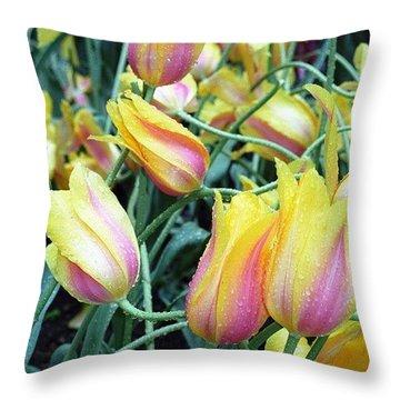 Crazy Tulips Throw Pillow