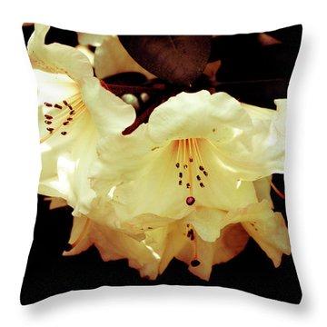 Creamy Rhododendron Throw Pillow