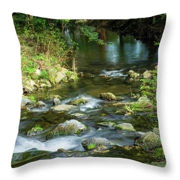 Creek Bend Throw Pillow