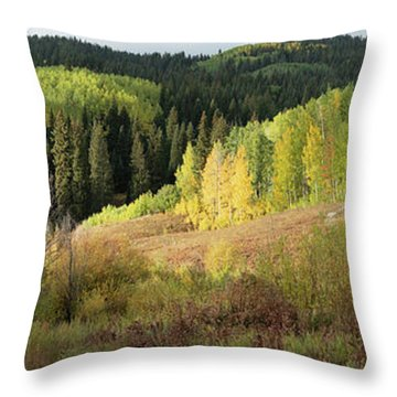 Throw Pillow featuring the photograph Crested Butte Colorado Fall Colors Panorama - 2 by OLena Art Brand